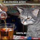 https://lolkot.ru/2012/12/23/ne-hvatilo-2/