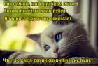 https://lolkot.ru/2014/07/14/ne-igrayte-s-lyubovyu/