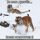 https://lolkot.ru/2013/01/07/ne-lepi-durochka/