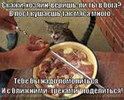 https://lolkot.ru/2013/04/17/ne-oskorblyayte-chuvstva-veruyuschih/