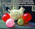 https://lolkot.ru/2014/06/02/ne-ravnotsennaya-zamena/