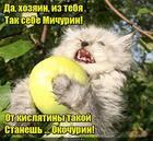 https://lolkot.ru/2018/05/21/ne-sladenko-i-na-vkus-gadenko/
