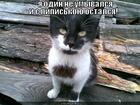 https://lolkot.ru/2012/08/25/ne-umyvalsya/