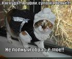 https://lolkot.ru/2013/11/01/ne-v-obraze/