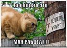 https://lolkot.ru/2010/06/11/ne-vlezay-ubet/