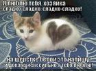 https://lolkot.ru/2013/11/19/ne-zabudu-mat-rodnuyu/