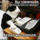 https://lolkot.ru/2011/06/23/ne-zamechal/