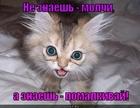 https://lolkot.ru/2012/05/14/ne-znayesh/