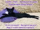 https://lolkot.ru/2018/11/27/nechayannyy-shedevr/