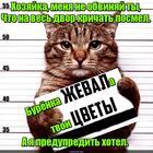 https://lolkot.ru/2017/03/19/nedokazatelstvo-viny/