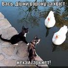 https://lolkot.ru/2013/01/04/nehay-garknet/