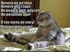 https://lolkot.ru/2014/07/18/nehoroshiye-vy-uydu-ya-ot-vas-s/