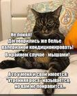 https://lolkot.ru/2020/06/19/nekonditsionirovannyy-shantazh/