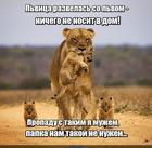 https://lolkot.ru/2020/05/17/nenosyaschiy-nenuzhnyy/