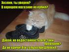 https://lolkot.ru/2016/08/01/nepristoynoye-predlozheniye-2/