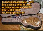 https://lolkot.ru/2015/12/16/nepriznannyy-geniy/