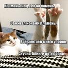 https://lolkot.ru/2018/02/19/neskuchnaya-evolyutsiya/