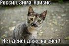 https://lolkot.ru/2011/03/31/net-deneg-na-sneg/