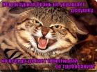 https://lolkot.ru/2012/05/29/netsenzurnaya-bran-2/