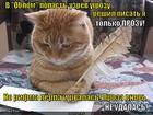 https://lolkot.ru/2013/09/06/neudavshiysya-prozaik/
