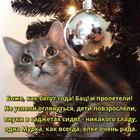 https://lolkot.ru/2019/12/26/neumolimyy-beg-vremeni/