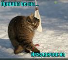 https://lolkot.ru/2013/03/20/nezhdanchik-4/
