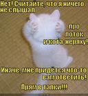https://lolkot.ru/2010/10/17/nichego-ne-slyshal/