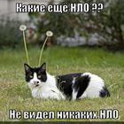 https://lolkot.ru/2014/05/04/nlo-5/