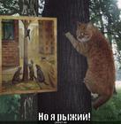 https://lolkot.ru/2012/08/08/no-ya-ryzhiy/