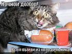 https://lolkot.ru/2011/08/05/nochnoy-dozhor/