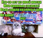 https://lolkot.ru/2018/04/29/novokot/