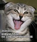 https://lolkot.ru/2011/11/26/novyy-plan/