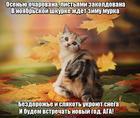https://lolkot.ru/2017/11/04/noyabrskaya-murka/
