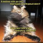 https://lolkot.ru/2014/07/21/obidno-do-slez/