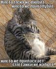 https://lolkot.ru/2012/09/12/obidnyak/
