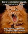 https://lolkot.ru/2014/05/11/obmanuli/