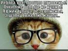https://lolkot.ru/2013/02/18/obostreniye/