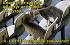 https://lolkot.ru/2016/12/19/ocherednoy-spor/