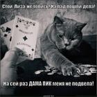 https://lolkot.ru/2013/11/25/ochko-bankira-2/