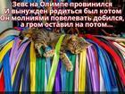 https://lolkot.ru/2018/08/16/ogranichennyye-polnomochiya/