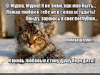 https://lolkot.ru/2016/01/06/ohlazhdeniye-lyubvi/