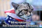 https://lolkot.ru/2014/10/11/omeriko-ne-rulit/