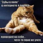https://lolkot.ru/2013/02/20/opa-kakaya-popa/