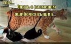 https://lolkot.ru/2010/10/15/oshibochka-s-razmerom/