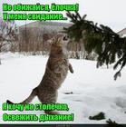 https://lolkot.ru/2018/01/23/osvezhitel-dyhaniya/