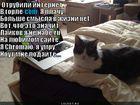 https://lolkot.ru/2012/06/19/otrubili-internet/