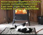 https://lolkot.ru/2014/02/18/palyonyy-macho/
