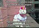 https://lolkot.ru/2020/01/18/panelnyye-trudnosti/