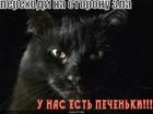 https://lolkot.ru/2010/11/03/perehodi-na-storonu-zla/