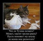https://lolkot.ru/2016/01/24/perekvalifikatsiya-tuzika/